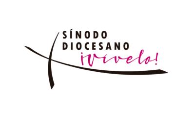 Formación de los grupos sinodales en la diócesis