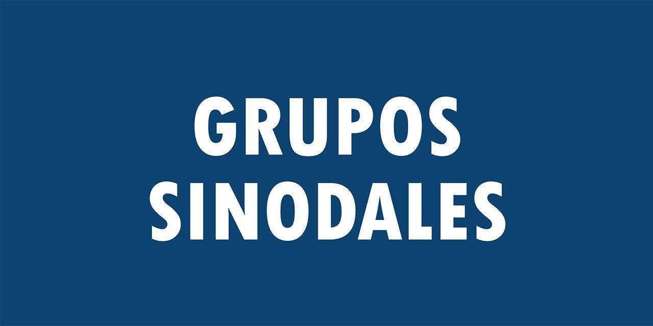 Importante: el plazo para la constitución de los Grupos Sinodales se amplía hasta el 15 de enero